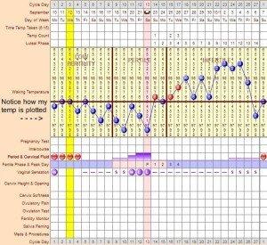 basal body temperature chart